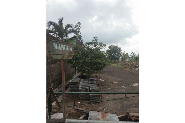 Rp870jt Tanah Dijual