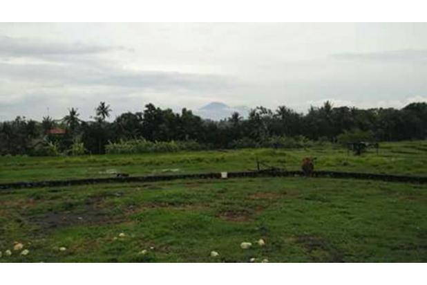 Tanah Canggu Pemandangan Sawah dan Gunung 17825749