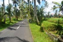 1.000 m2 View Sawah 2 jt/m di Ubud Tegalalang MUBD653