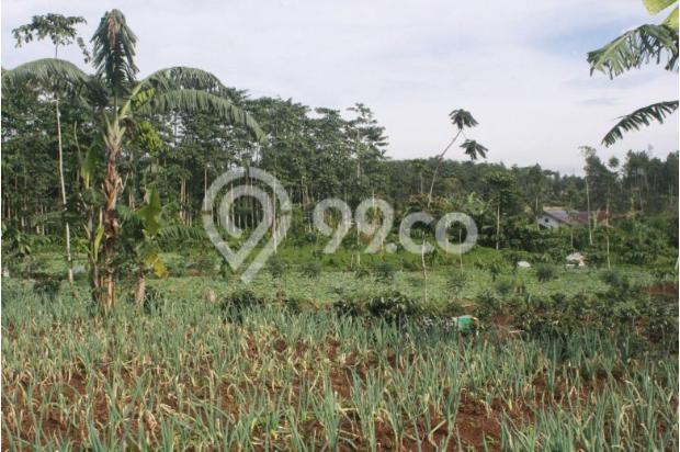 Investasi Kavling Villa Puncak Cipanas, Green Montana Village 16225373