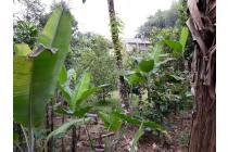 Tanah-Bogor-11