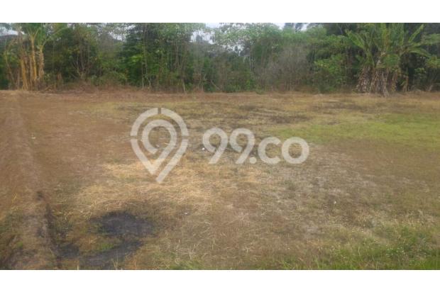 Tanah Untuk Bangun Rumah atau Kos, Pilih Area Timur Bandara 13426759