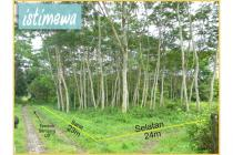 Tanah Hoek Istimewa,Hanya 300M Dari Pintu Belakang Kampus UII,Co2k Utk Kost