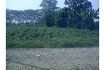 Tanah pinggir jalan di Cinangneng