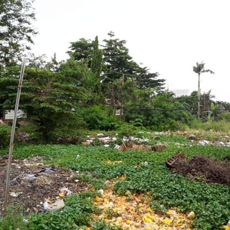 Tanah di Pinggir Jalan Raya Aria Putra
