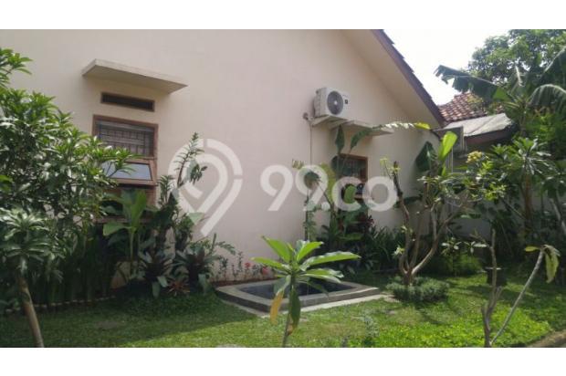 Dijual Rumah Nyaman dan Asri di Bogor 16845343