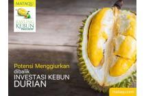 Kavling Kebun Produktif Kampung Quran MataQu Tahap 3