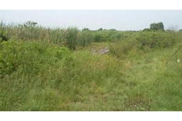 Rp5,11mily Tanah Dijual