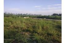 Tanah-Sidoarjo-13