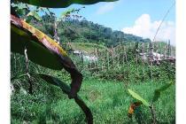 Tanah bagus seluas = 2,300M2 (Cimande-Sukabumi)