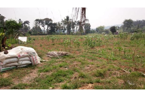 Rp12,1trily Tanah Dijual