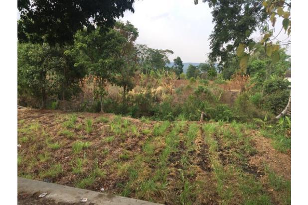 Rp6,6mily Tanah Dijual