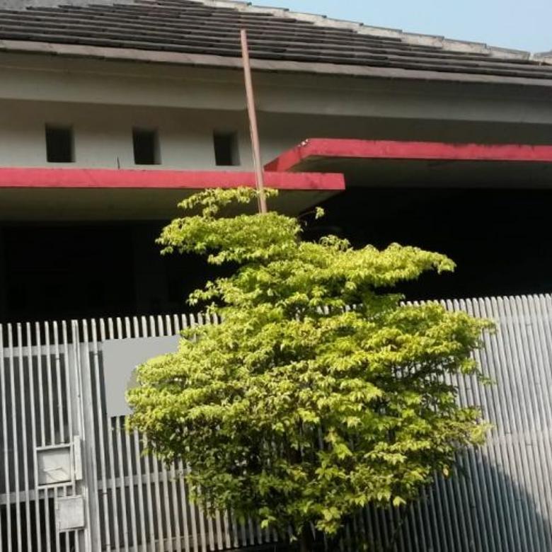 Rapih & Nyaman Dihuni @Villa Nusa Indah 5 LT 84 LB 80, NEGO !