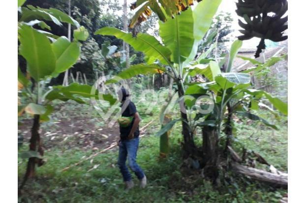 Tanah 450rb di Leuwi Gajah Cimahi 11824088