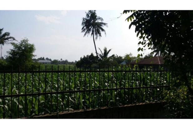 Dijual Tanah Medan Binjai 10048104