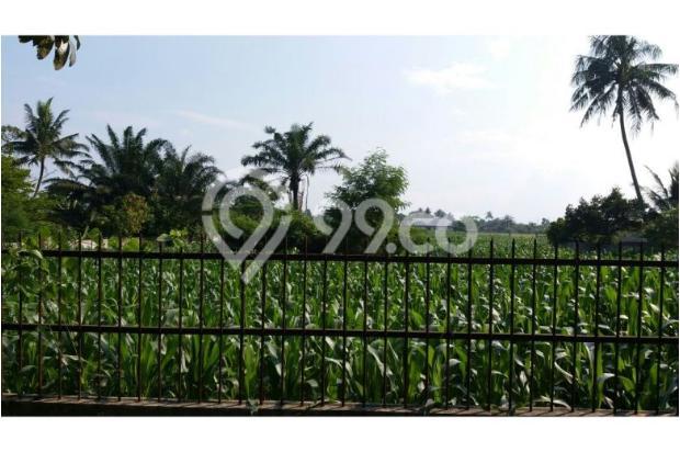 Dijual Tanah Medan Binjai 10048108