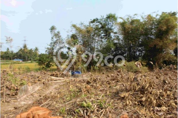 Perhatikan Site Depan Tanah Sebelum Beli Kaveling; Lebih 6 Meter Ideal 12898836