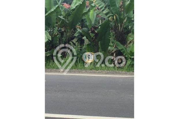 Dijual Tanah Daerah Cariu Bogor 9855233