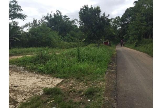 Dijual Tanah Daerah Cariu Bogor 9855234