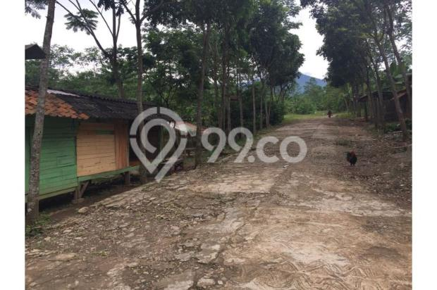 Dijual Tanah Daerah Cariu Bogor 9855235
