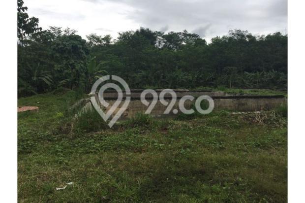 Dijual Tanah Daerah Cariu Bogor 9855238