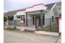Rumah 1 lantai di Ciater Permai BSD Serpong. Sudah Renovasi. LT/LB: 154/100