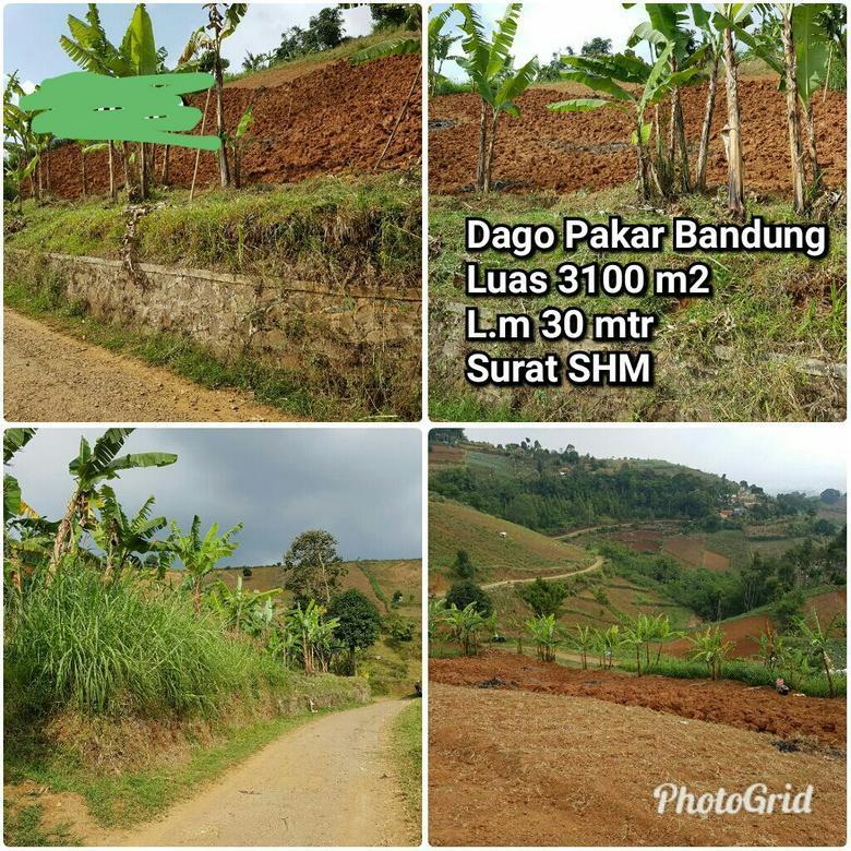 Tanah dengan Pemandangan Kota Bandung di Sayap Dago Pakar!
