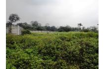 Tanah Strategis Pinggir Jalan Raya Dekat Holcim