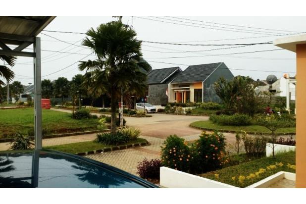 View Teras-1 10573543