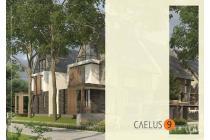 Rumah Mewah Caelus Terbaru dan Terdepan di BSD City