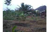Tanah Bonus Rumah. Strategis 15 Menit ke Bandara SSK II Pekanbaru