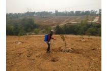 Tanah-Bogor-2
