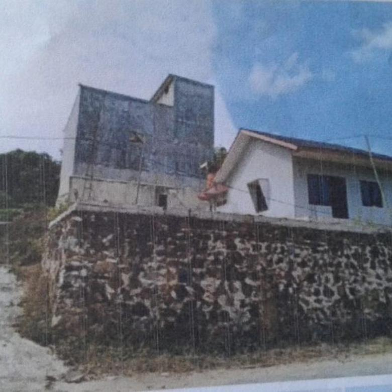 rumah sarang burung walet