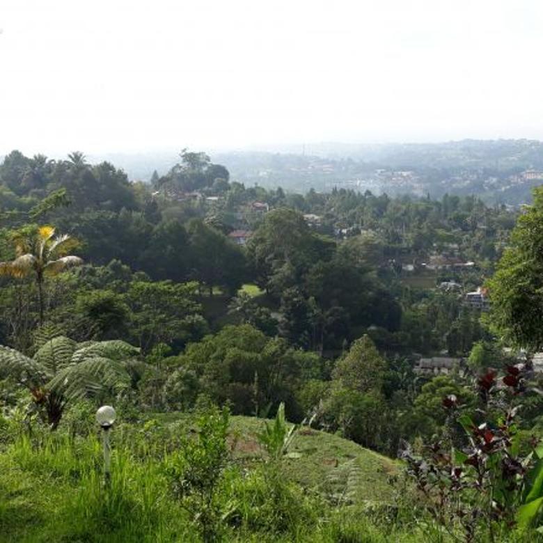 Tanah Murah Meganendung Bogor