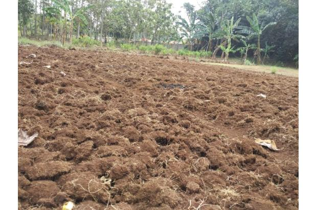 DiJual Tanah Kavling Di Kab Bekasi Lokasi Strategis, sertifikat SHM 13243960