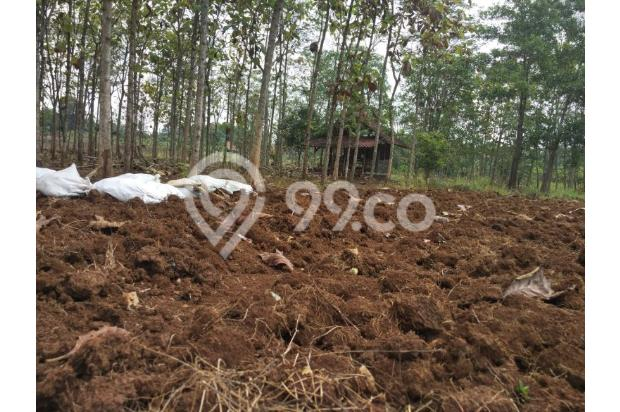 DiJual Tanah Kavling Di Kab Bekasi Lokasi Strategis, sertifikat SHM 13243978