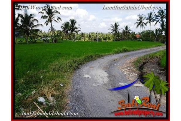 View Sawah link Villa 3,400 m2 di Ubud Pejeng 18273926