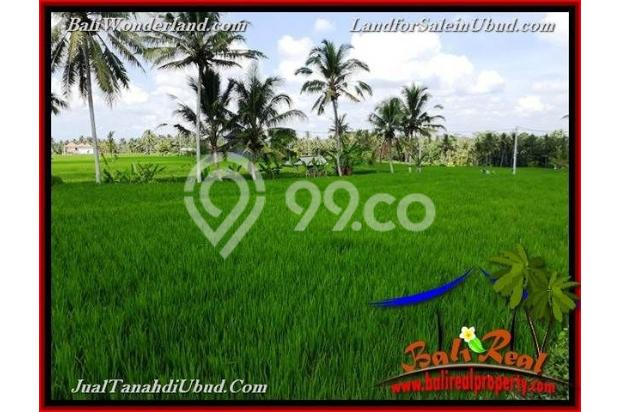 View Sawah link Villa 3,400 m2 di Ubud Pejeng 18273928