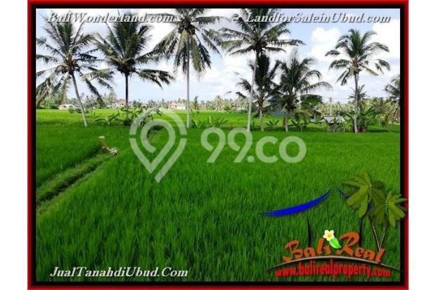 View Sawah link Villa 3,400 m2 di Ubud Pejeng 18273927