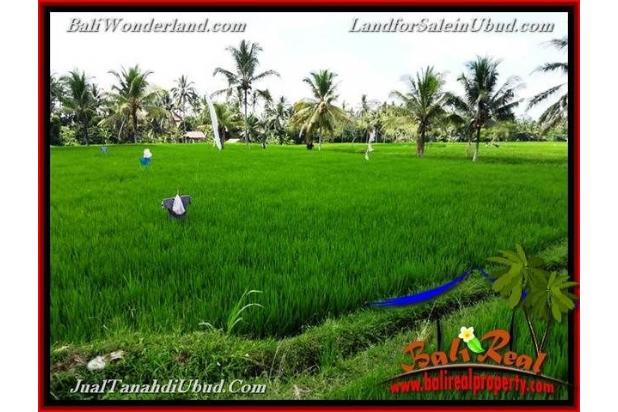 View Sawah link Villa 3,400 m2 di Ubud Pejeng 18273925