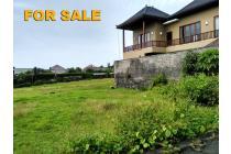Tanah 2 are Untuk Villa di Umalas Kerobokan Bali