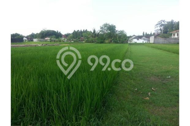 Tanah Dijual Dekat Bandara Adisucipto Jogja Tepatnya Pinggir Jalan Berbah 12272407