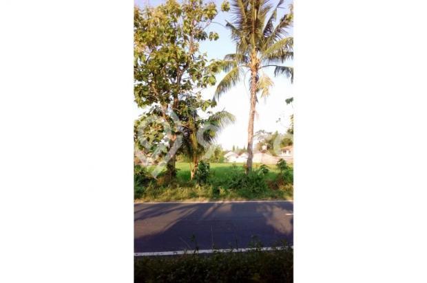 Tanah Dijual Dekat Bandara Adisucipto Jogja Tepatnya Pinggir Jalan Berbah 12272409