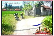 Tanah-Gianyar-4