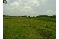 Tanah Dijual Mojokerto