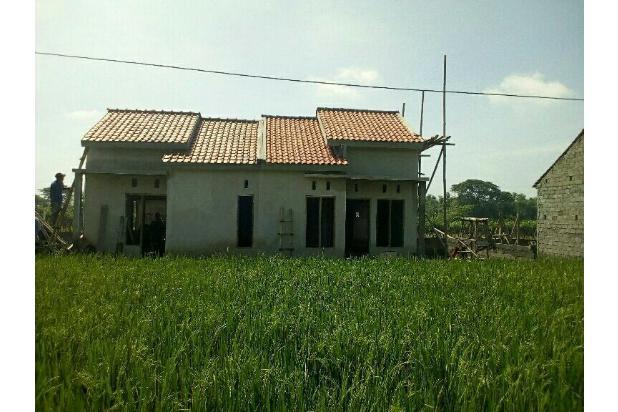 rumah murah di klaten 16358699