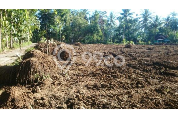 Dekat Nyia Yogyakarta, 12 X CICILAN TANPA BUNGA 17699426