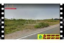 DIJUAL tanah pinggir jalan Raya Jenu-Jenu di pantura di TUBAN.