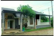 Rumah asri & nyaman