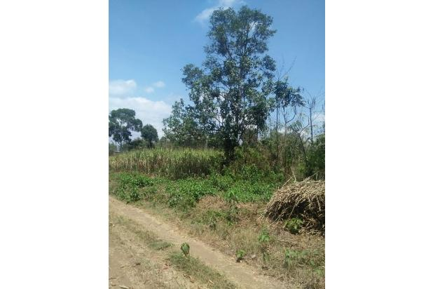 Rp7,28mily Tanah Dijual